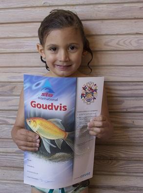 Diploma Goudvis